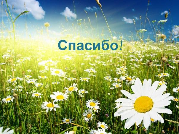 http://svetmaiaka.ru/uploads/posts/2013-09/aa0ef04fcd530dcaeb7da9a565549c58.jpg